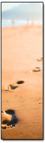 A journey of a thousand miles starts with one small step...